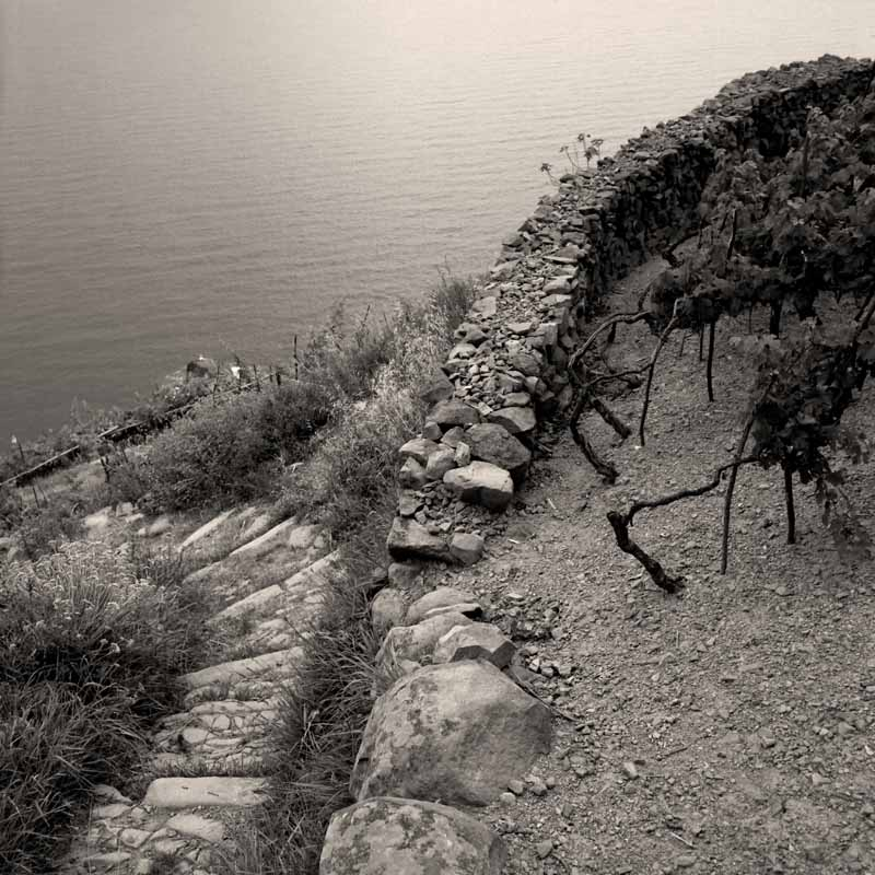Dry Stone Wall, 5 Terre